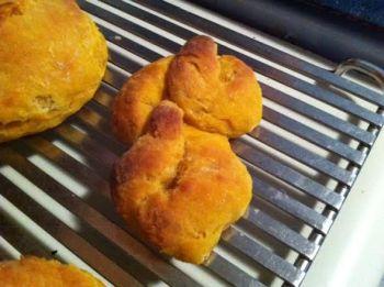 biscuit turd